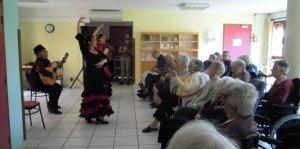 1327024_764_flamenco-a-la-residence-039_667x333